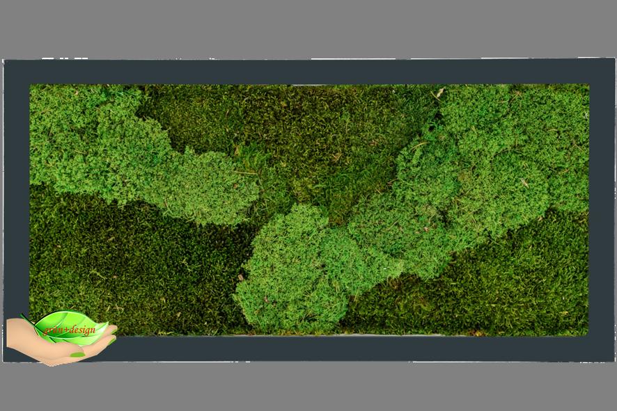 Hier sieht man ein rechteckiges Moosbild mit einem Rahmen aus lackiertem MDF in anthrazit mit 50% Flachmoos und 50% dickerem Moos.